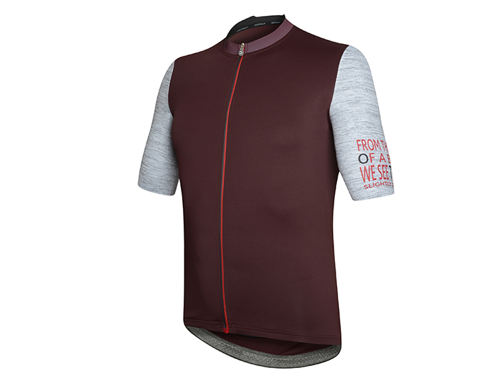 Future Jersey bordeaux-melange light gray