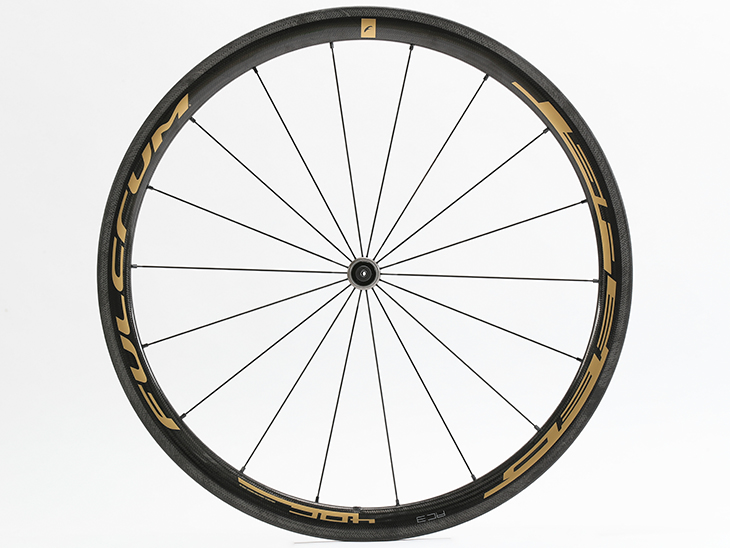 SPEED 40C GOLD Limited Edition Front