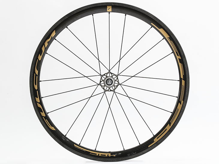 SPEED 40C GOLD Limited Edition Rear