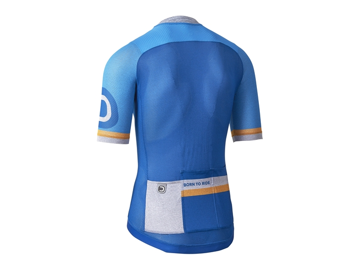 Aero Light Jersey china blue back